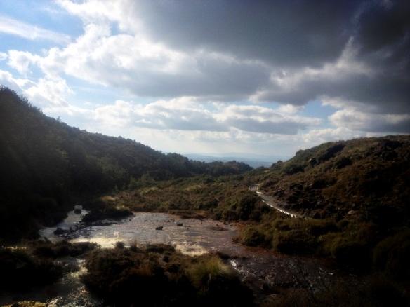 Whakapapanui Trail
