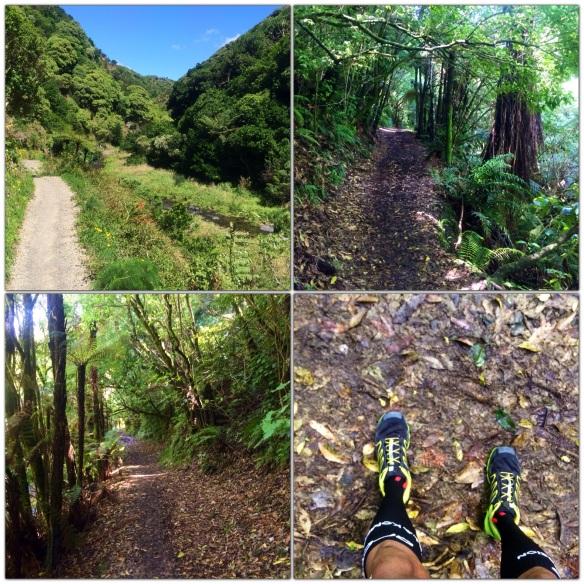 Korokoro Stream Trail