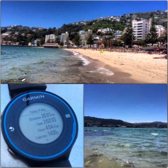 Monday Run Along the Bays
