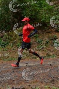 Tauhara Trail Half Marathon
