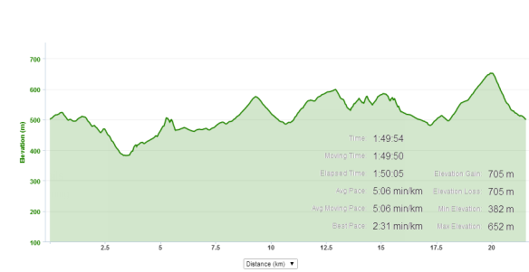 Tauhara 2014 Profile and run data